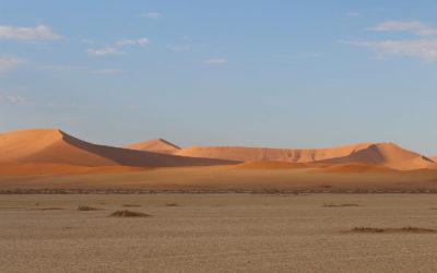 Tour 48: 11 Day Kgalagadi – Namib Desert & Etosha Tour