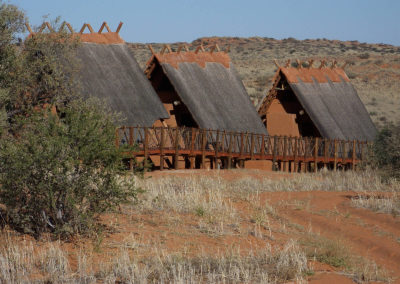 Tour 04 - Kgalagadi Transfrontier Park - Xaus Lodge - Accommodation Chalets