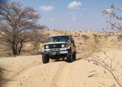 Tour 10 - Kgalagadi - Nossob Eco 4x4 - En Route - Copy (2)