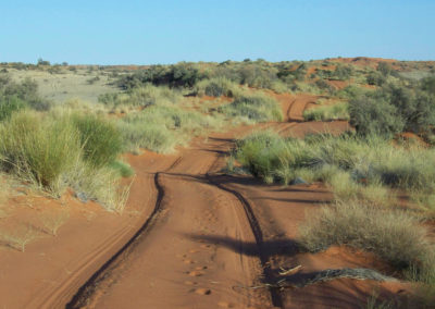 Tour 27 - Kalahari 4x4 Trail - Trail to the Namibia Border Fence