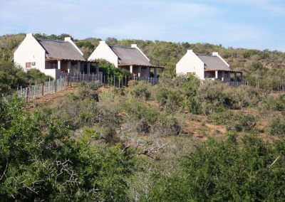 Tour 35 - Kalahari - Port Elizabeth - Accommodation Chalets - Addo Park