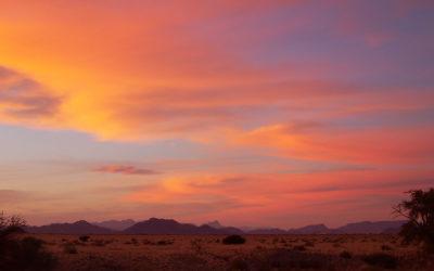 Tour 50: 21 Day Namibia & Botswana – Desert & Wildlife Tour