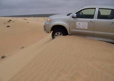 Tour 30 - Caracal & Diamond Coast 4x4 Trail - Stuck on the Strandveld Trail, Diamond Coast