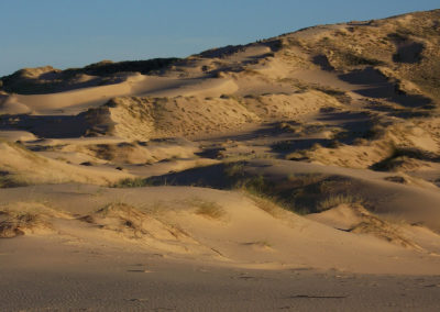 Tour 07 - Kgalagadi - Augrabies - Witsand - Witsand Dunes