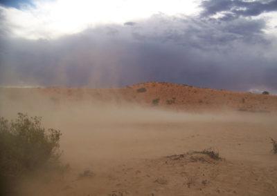 Tour 10 - Kgalagadi - Nossob Eco 4x4 - Kalahari Dust Storm