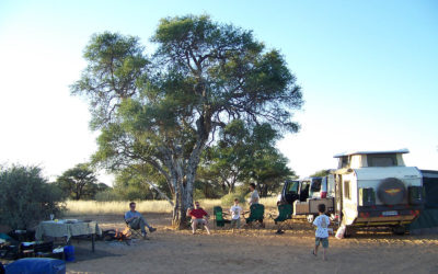 Tour 12: 7 Day Kgalagadi – Mabuasehube 4×4 Tour