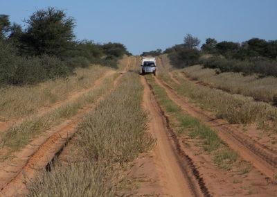Tour 13 - Kgalagadi - Mabuasehube - Kaa 4x4 - Mabua 4x4 Road