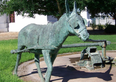 Tour 15 - Day Tours - Upington & Augrabies - Donkey Monument