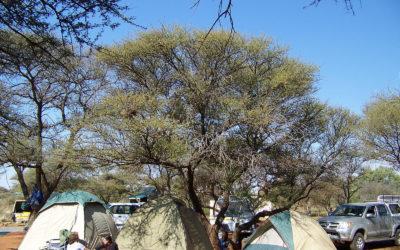 Tour 19: 4 Day Mokala National Park – Witsand Nature Reserve Tour