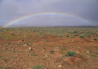 Tour 25 - Arid Parks - Rainbow, Tankwa Karoo