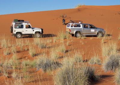 Tour 27 - Kalahari 4x4 Trail - Kalahari Dune