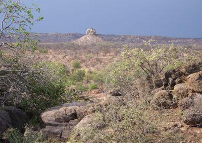 Tour 46 - Northern SA Parks & Kruger Park - Landscape, Mapungubwe Park