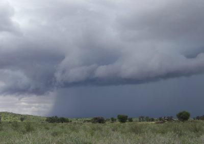 Tour 53 - South & Central Botswana - Thunderstorm, Kgalagadi Park