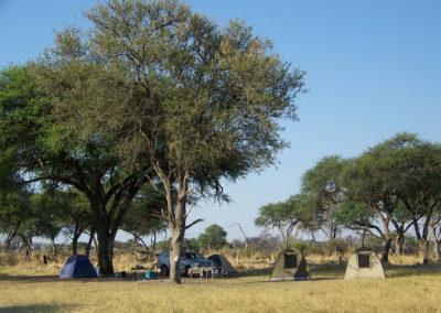 Tour 54 - Botswana Camping Safari - Accommodation - Magotho Campsite, Khwai