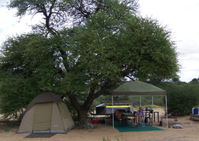 Tour 61 - Kalahari Meerkat Tour - Accommodation - Polentswa Camping