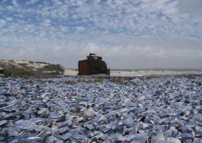 Tour 30 - Caracal & Diamond Coast 4x4 Trail - Aristea Shipwreck, Diamond Coast